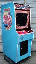 Ace Amusements Arcade Classics Donkey Kong Multicade